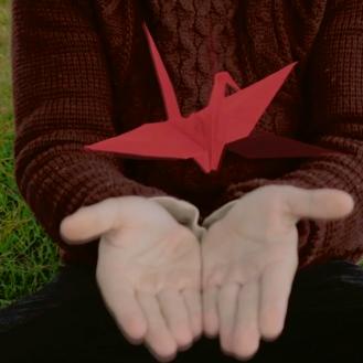 Origami Volador VFX